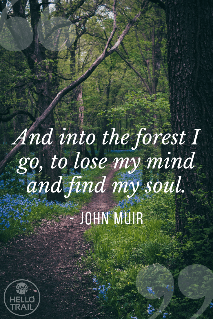 John Muir forest hiking quote - HelloTrails